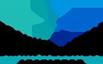 Brain Wellness Institute Logo